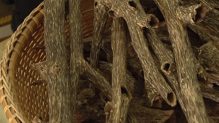 kayu gaharu