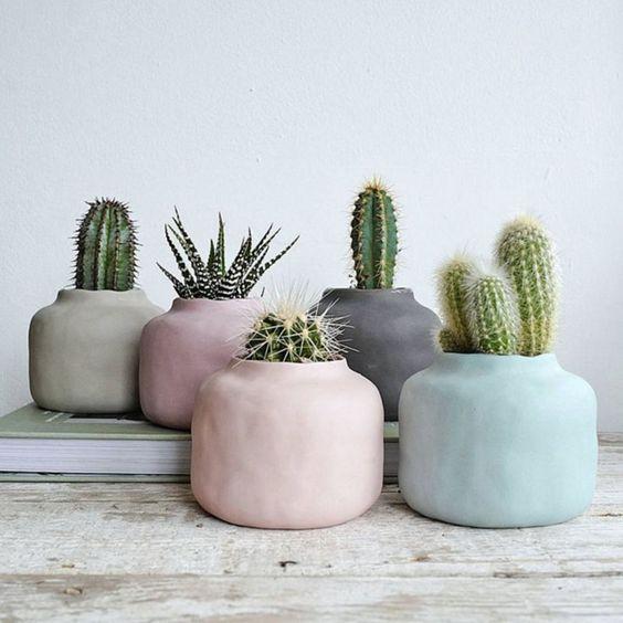 kreasi pot kaktus