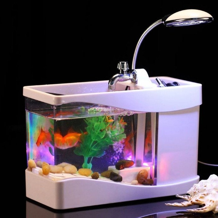 Harga Aquarium Beragam Jenis Mulai Dari Rp30 Ribu Sampai Rp39 Juta