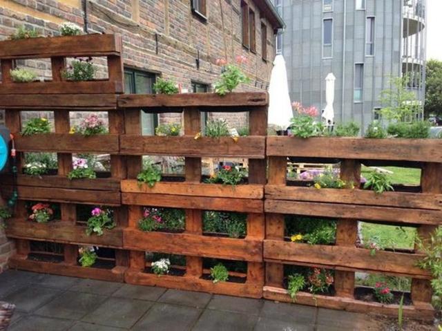 contoh pagar rumah tanaman hias