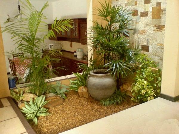 taman indoor minimalis di dekat dapur