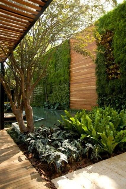 pagar rumah kayu tanaman