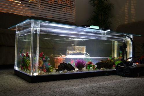 tahap pembuatan aquarium