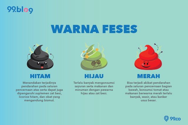 warna feses