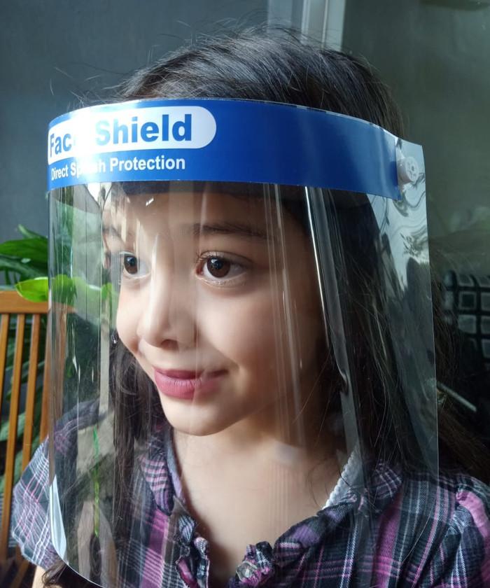 Face Shield Standar