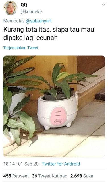 pot DIY