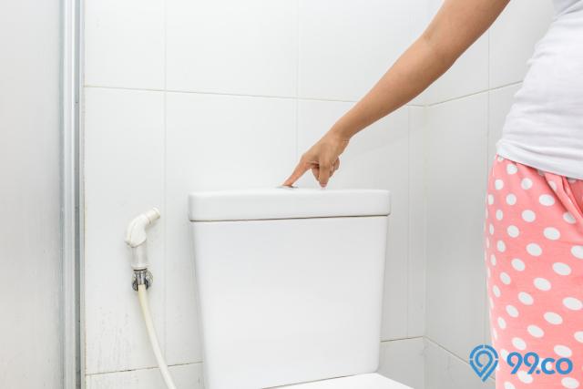 tombol flush