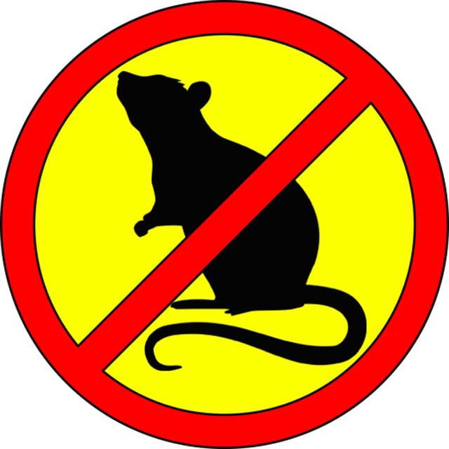 Rat & Mice Ultrasonic Professional Repellent Sound