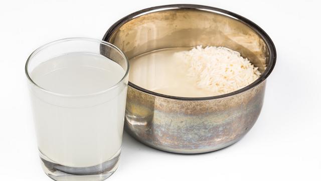 cara membasmi ulat bulu dengan air beras