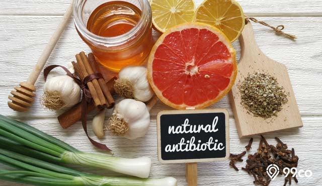 antibiotik alami untuk tubuh