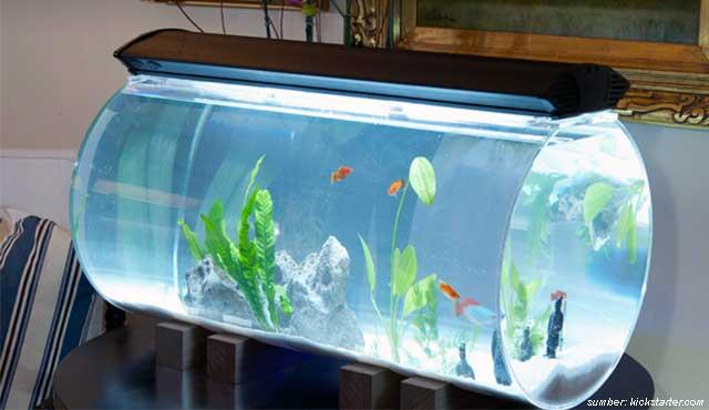 desain aquarium unik