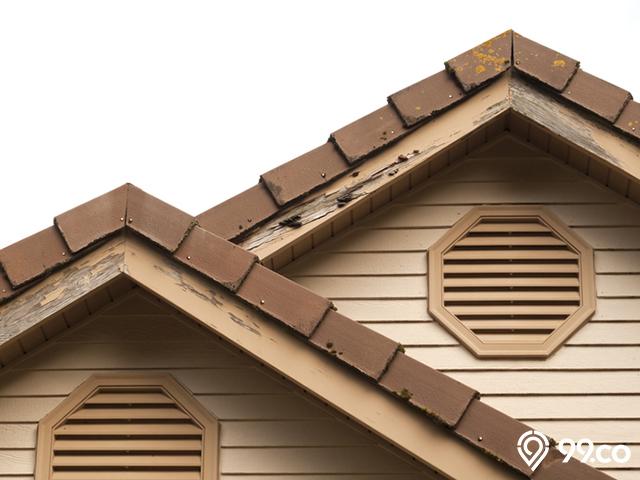 atap rumah anti rayap