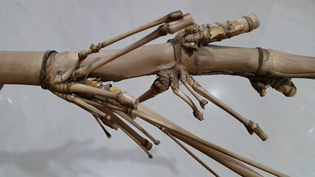 bambu pethuk senopati