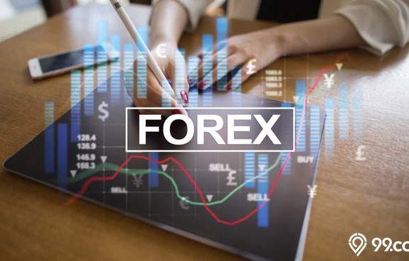 cara belajar trading forex