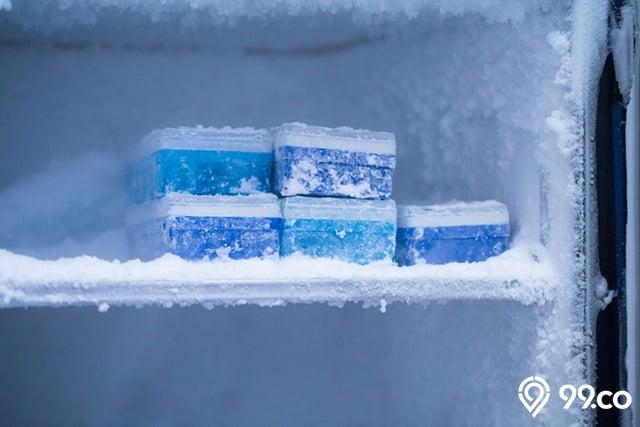 bunga es freezer