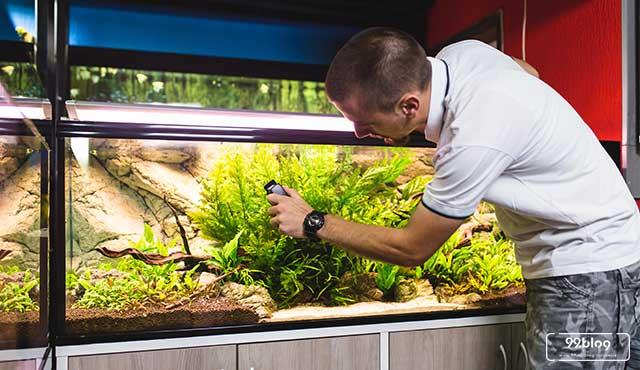 7 Cara Membersihkan Kaca Aquarium dari Kerak. Simpel dan Ampuh!