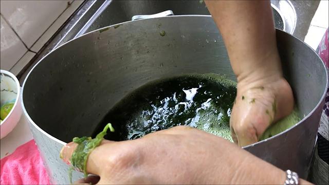 cara membuat cincau hijau