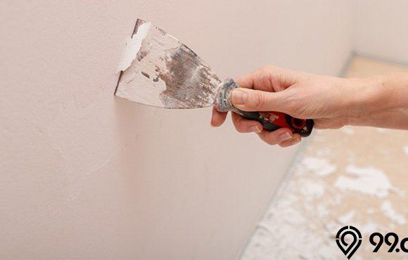 cara mengelupas cat rumah