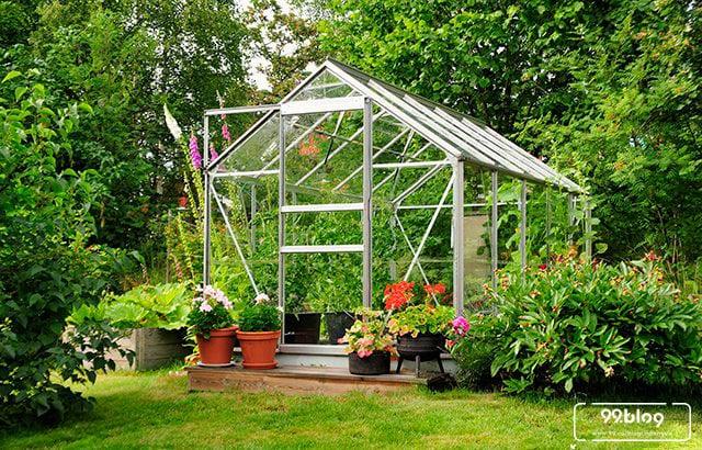 desain green house