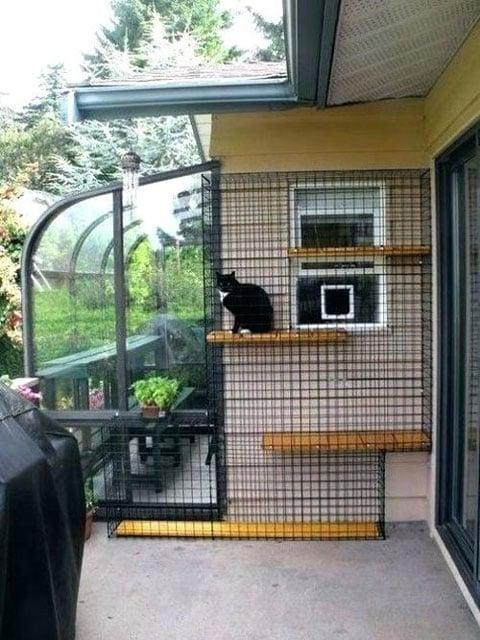 7 Desain Kandang Kucing Terunik Salah Satunya Milik Raditya Dika