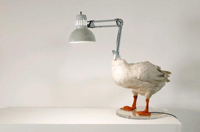 desain lampu terburuk
