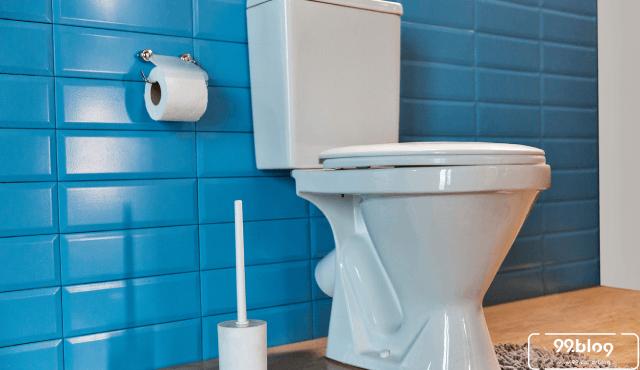 Dari Bulgaria Hingga India, Ini 25 Desain Toilet Umum Berbagai Negara