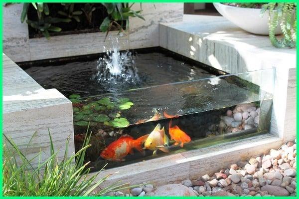 kolam ikan model akuarium