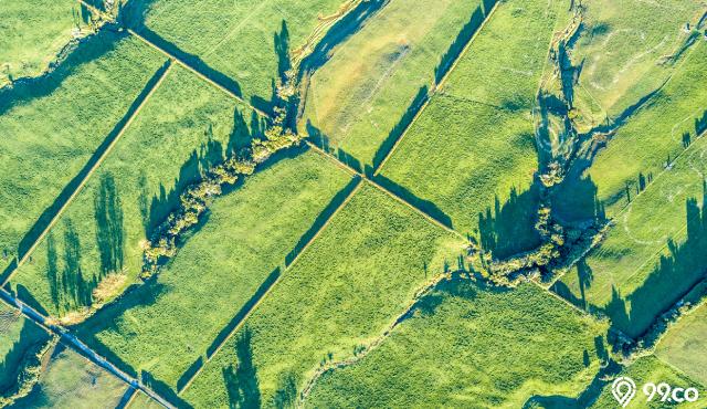 Catat, Ini 7 Faktor Penentu Kenaikan Harga Tanah di Pasaran dan Proyeksi 2021. Teliti Sebelum Investasi!