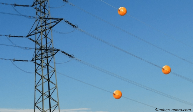 Fungsi Tersembunyi Bola Bola Pada Kabel Listrik Sudah Tahu Belum