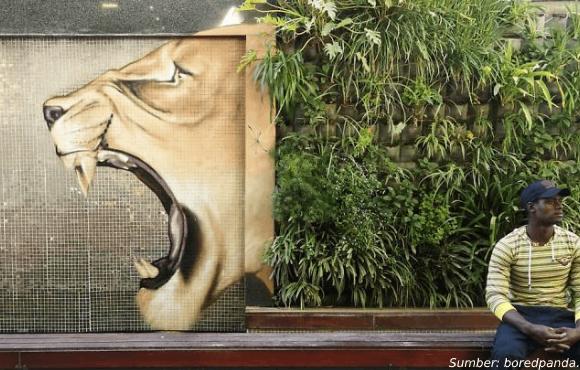 gambar grafiti seniman afrika