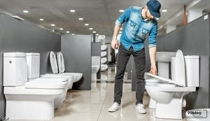 harga toilet duduk