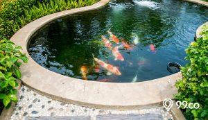 cat kolam ikan