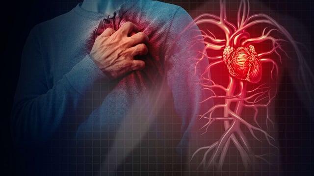manfaat jamblang kesehatan jantung