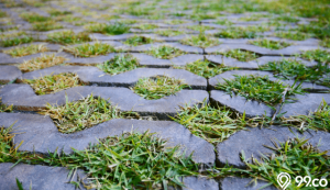 paving block rumput