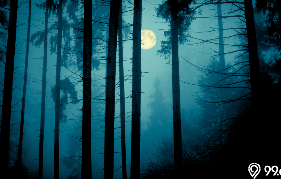 mitos tidak bisa tidur di malam hari