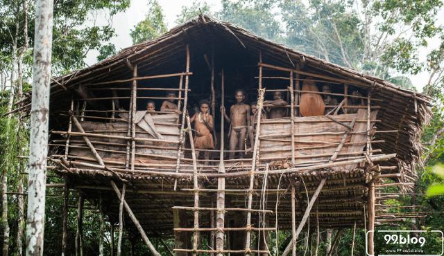6 Jenis & Gambar Rumah Adat Papua yang Belum Banyak Dikenal, Ada Rumah Pohon!