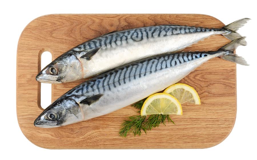 ikan segar omega 3