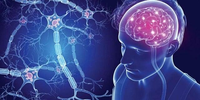 penyakit multiple sclerosis