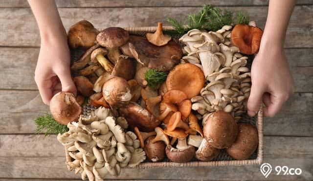 15 Jenis Jamur yang Bisa Dimakan, Aman, Lezat, dan Bergizi | Mana Favorit Kamu?
