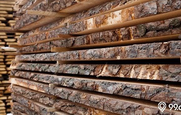 jenis kayu langka