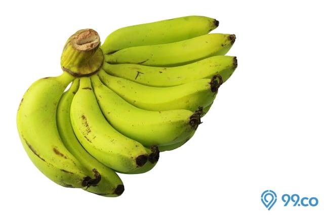 jenis pisang