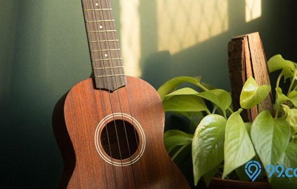 ukulele dan tanaman