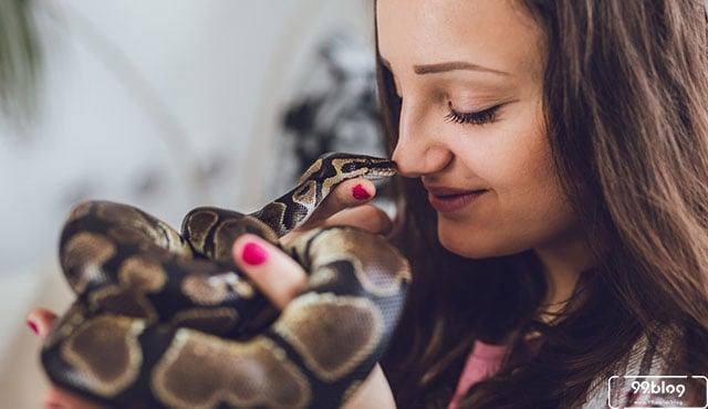 jenis ular peliharaan