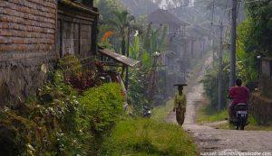 kampung janda