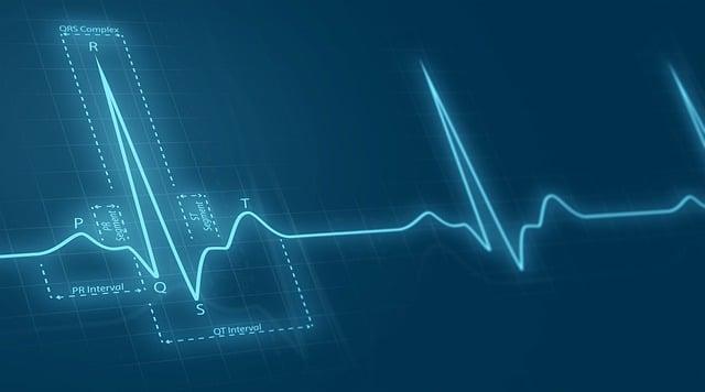 buah cangkaleng mencegah penyakit jantung