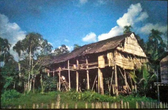 rumah betang uluk palin