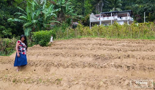 4 Wilayah Indonesia dengan Konflik Pertanahan Terbanyak di Indonesia