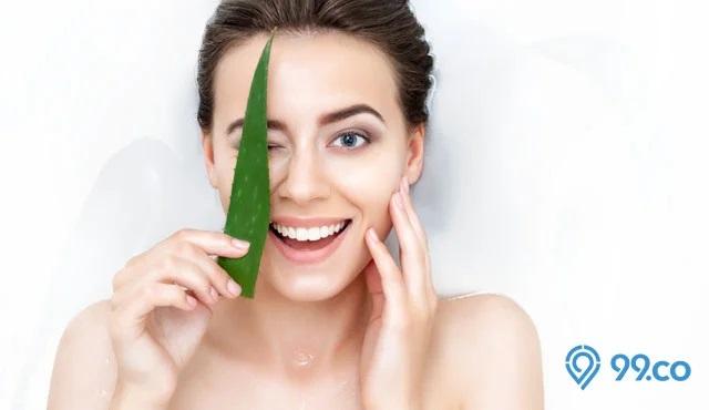 lidah buaya untuk menumbuhkan rambut