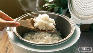 makan nasi sisa