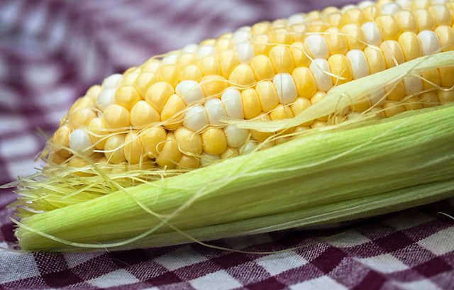 manfaat air rebusan jagung